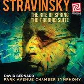 Stravinsky: The Rite of Spring & The Firebird Suite de Park Avenue Chamber Symphony