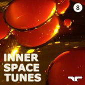 Inner Space Tunes 8 by Various Artists