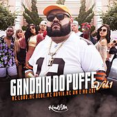 Gandaia do Puffe, Vol. 1 de Dj Puffe