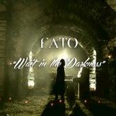 Wait in the Darkness de Fato