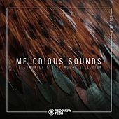 Melodious Sounds, Vol. 2 de Various Artists