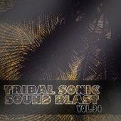 Tribal Sonic Soundblast,Vol.34 by Various Artists