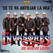 Se Te Va Antojar la Mía by Los Invasores De Nuevo Leon