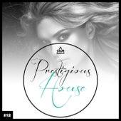 Prestigious House, Vol. 12 by Various Artists