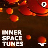 Inner Space Tunes 9 by Various Artists