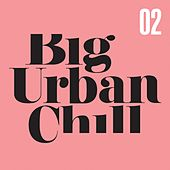 Big Urban Chill, Vol. 2 by Various Artists