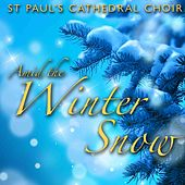 Amid the Winter Snow de St. Paul's Cathedral Choir