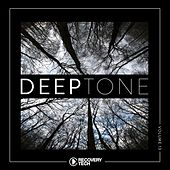 DeepTone, Vol. 13 by Various Artists