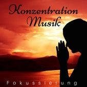 Konzentration Musik - Fokussierung mit Nature Musik, Entspannungmusik für Regeneration, Effektive Lerntechniken, Stressbewältigung by Kapa Nyolo