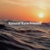 10 White Noise and Natural Rain Sounds: Sleep Aid, Tinnitus Blocker, Baby Sleep Aid, Insomia Cure, Deep Sleep, Relaxation, Calm by Zen Music Garden