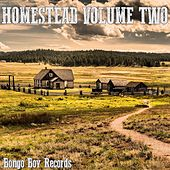 Homestead, Vol. Two von Various Artists