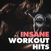 Insane Workout Hits by Various Artists