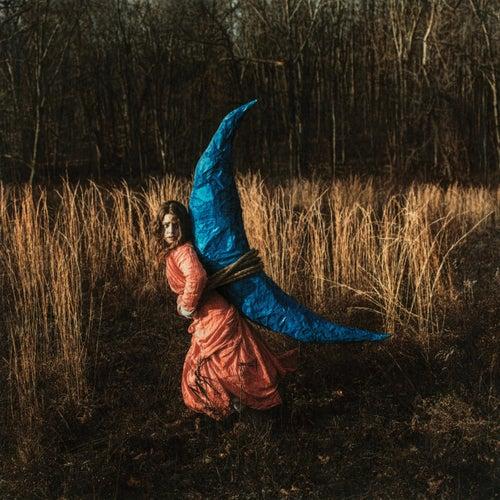 Golden Spiral by Holly Miranda