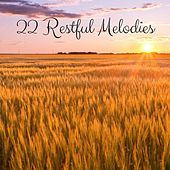 22 Restful Melodies by Meditation Music Zone