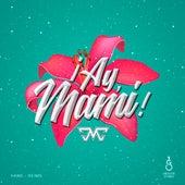 ¡Ay, Mami! by DMC