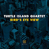 Bird's Eye View by Turtle Island String Quartet