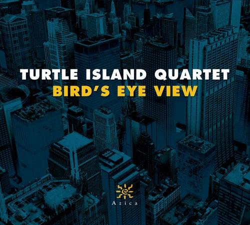 Bird's Eye View by Turtle Island String Quartet