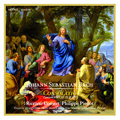 J.S. Bach: Consolatio by Various Artists