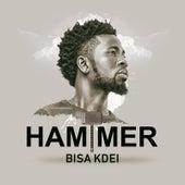 Hammer by Bisa Kdei