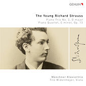 The Young Richard Strauss by Various Artists