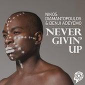 Never Givin' Up by Nikos Diamantopoulos