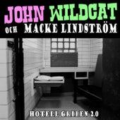 Hotell gripen 2.0 by John Wildcat