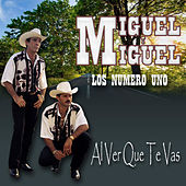 Al Ver Que Te Vas by Miguel Y Miguel