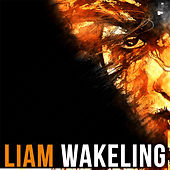 All Along the Watchtower by Liam Wakeling