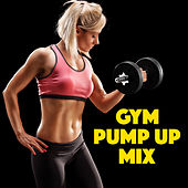 Gym Pump Up Mix von Various Artists