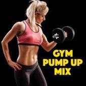 Gym Pump Up Mix de Various Artists