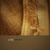 Wake:Sleep by A Lily