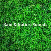 07 Ambient Rain and White Noise Sounds for Sleep, Zen, Peace, Meditation, Insomnia, Tinnitus and Wellbeing by Zen Music Garden