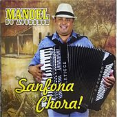 Sanfona Chora! by Various Artists