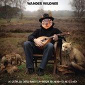 De Gritar Me Cansei Rouco e ao Pensar no Mundo Eu Me VI Louco de Wander Wildner