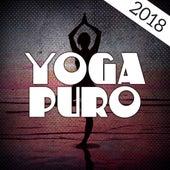 Yoga Puro 2018 de Meditación Música Ambiente