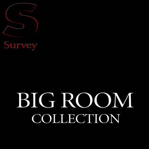 Big Room Collection de Various