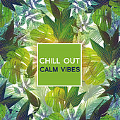 Chill Out Calm Vibes von Club Bossa Lounge Players