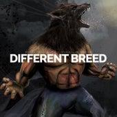 Different Breed (Motivational Speech) de Fearless Motivation