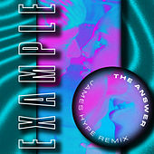 The Answer (James Hype Remix) de Example