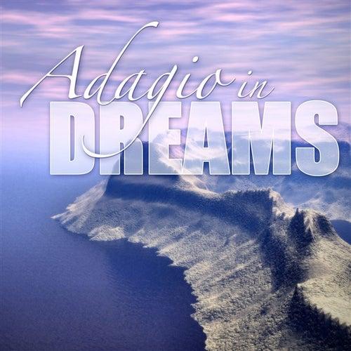 Adagio In Dreams by Various Artists