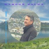 Heele by Haroon Bacha