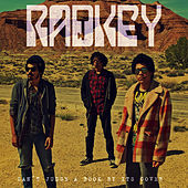 You Can't Judge a Book by the Cover (Bo Diddley cover) by Radkey