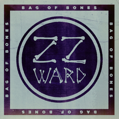 Bag of Bones (Fan Version) by ZZ Ward
