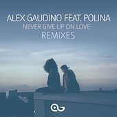 Never Give Up on Love (Remixes) by Alex Gaudino