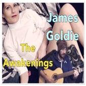 The Awakenings by James Goldie