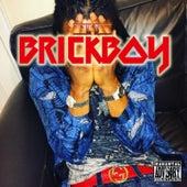 Brickboy by Ld Brickboy