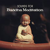 Sounds for Buddha Meditation de Zen Meditation and Natural White Noise and New Age Deep Massage