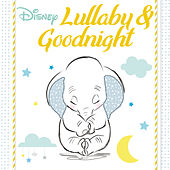Disney Lullaby & Goodnight de Fred Mollin