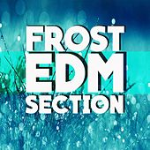 Frost EDM Section - EP by Various Artists