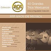 RCA 100 Anos De Musica - Segunda Parte (40 Diferentes Grandes Trios - Unica E Inigualable Coleccion) by Various Artists